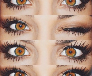 eyes, brown, and makeup image