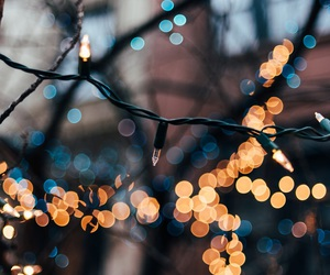 light and autumn image