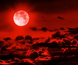 amazing, moon, and beautiful image