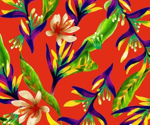 flowers and patterns image