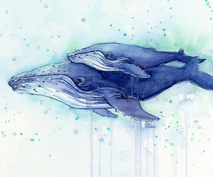 etsy, Humpback Whale, and whale drawing image