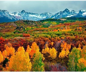 autumn, mountains, and fall image