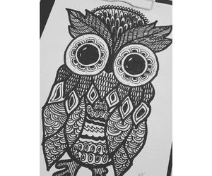 beautiful, gufo, and draw image