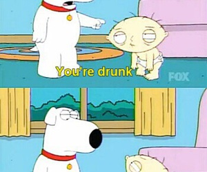 family guy, drunk, and sexy image