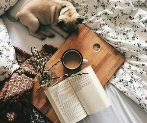book, dog, and coffee image