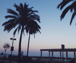 palmtrees, spain, and sunset image