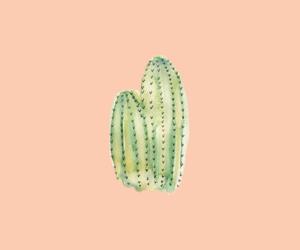 cactus image
