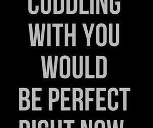 quotes, cuddle, and cuddling image