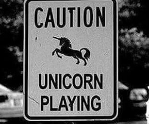 unicorn, caution, and black and white image