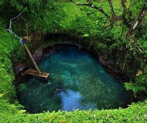 lush, nature, and earth porn image