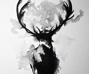 black, deer, and draw image