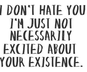 hate, quotes, and Existence image