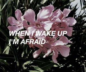afraid, Lyrics, and the neighbourhood image