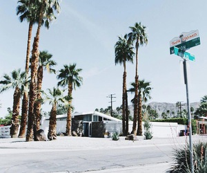 los angeles, palms, and places image