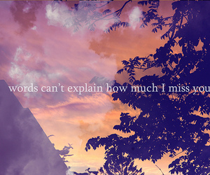 text, miss, and words image