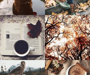 aesthetic, background, and coffee image
