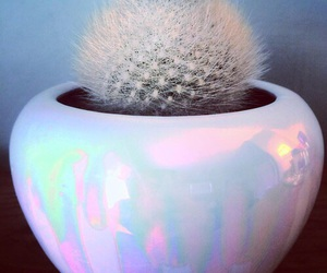 holographic, cactus, and plant image