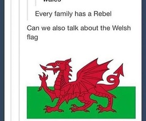 funny, tumblr, and wales image
