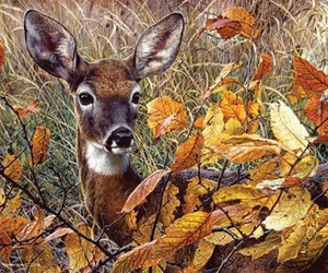 autumn, deer, and leaves image