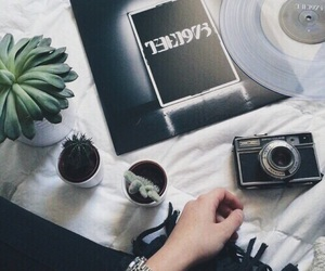 grunge, plants, and music image