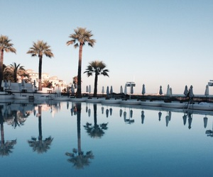marbella, palmtree, and pool image