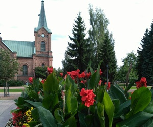 church, finland, and flowers image