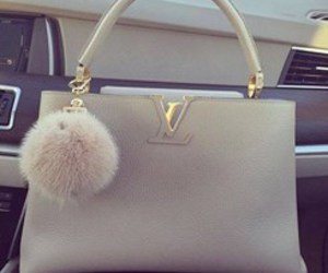 bag, fashion, and Louis Vuitton image