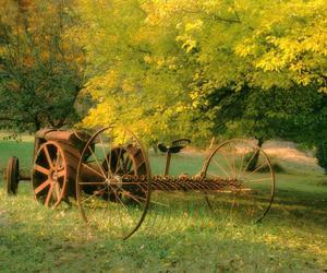 autumn, photo, and jesień image