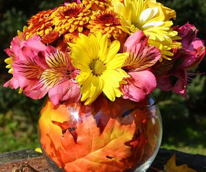 autumn, flower arrangements, and colorful image