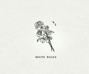 rose, quotes, and white image