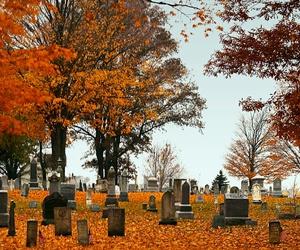 autumn, cemetery, and creepy image