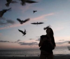 girl, bird, and sunset image