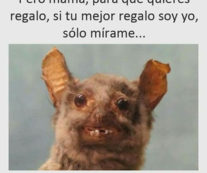 frases, humor, and lol image