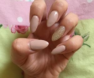 classy, fashion, and long nails image