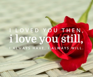 always, forever, and then image