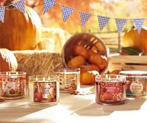 fall and pumpkin image