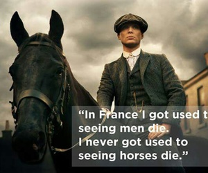 horse, quote, and tommy image