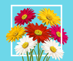 blue, flowers, and modern image