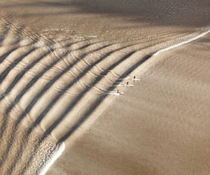 sand, beach, and surf image