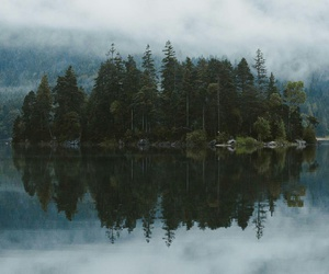 clouds, forest, and nature image