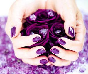 nails, purple, and rose image