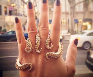 octopus, ring, and gold image