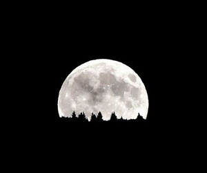 moon, night, and picture image
