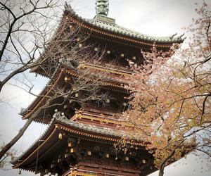 april, asakusa, and asia image