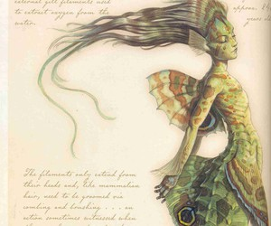 fantasy, mermaid, and pacific sea-maid image