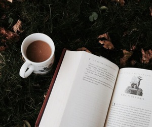 autumn, book, and goblet of fire image