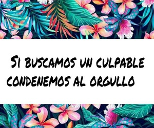 frases, orgullo, and culpable image