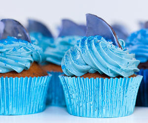 cupcake, blue, and shark image