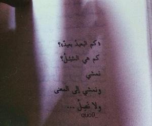 arabic, words, and كلمات image