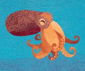 arte, pulpo, and animales acuaticos image